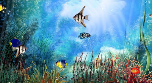 Scenery wallpaper fond d ecran anime gratuit om for Fond ecran gratuit aquarium