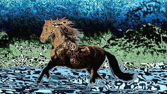 Fond ecran image et photo de cheval 1920x1080 for Photo ecran veille gratuit